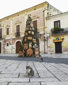 albero per gatti Lucera