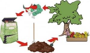 Figura-23-Schemi-del-ciclo-di-processo-di-alcuni-impianti-di-compostaggio