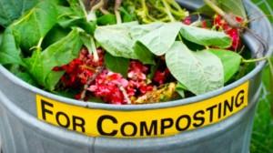 collegato_ambientale_compostaggio