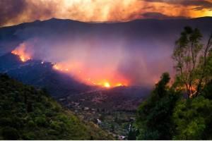 incendi_italia_fg